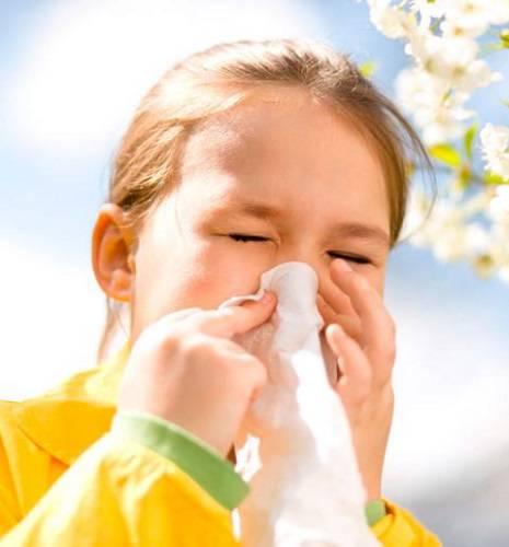 tipos-de-alergias-y-tratamientos imágen de artículo