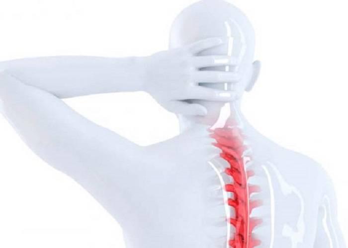 la-cirugia-ideal-para-fracturas-vertebrales imágen de artículo