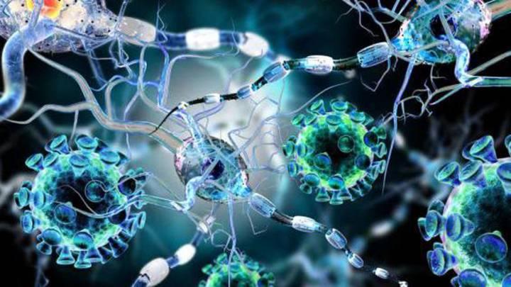 enfermedades-para-las-que-se-tuliza-la-terapia-celular imágen de artículo