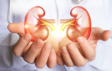 tips-para-mejorar-la-salud-renal-en-epoca-de-covid-19 imágen de artículo