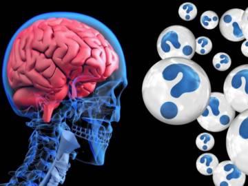 proteina-capaz-de-reducir-posibilidad-de-padecer-demencia imágen de artículo