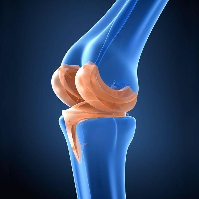 primer-centro-en-ofrecer-cirugia-robotica-para-protesis-de-rodilla imágen de artículo