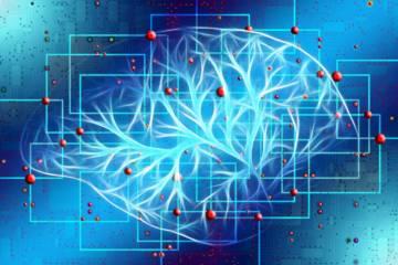 la-inteligencia-artificial-predice-la-muerte-por-sars-cov-2 imágen de artículo