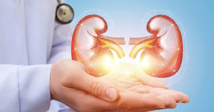 como-conseguir-una-buena-salud-renal imágen de artículo