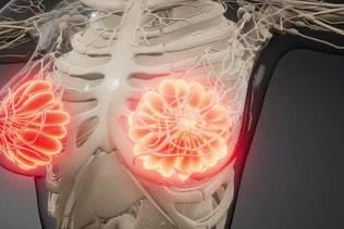 descubre-fragmentos-de-adn-causantes-de-una-disfuncion-en-el-tejido-mamario imágen de artículo