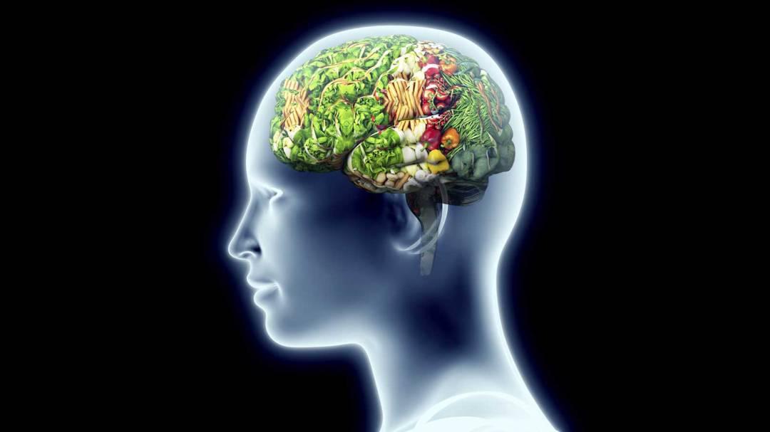 descubre-el-circuito-que-regula-la-saciedad-en-el-cerebro article image