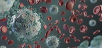 an-atomic-model-could-help-discover-drugs-against-covid-19 imágen de artículo
