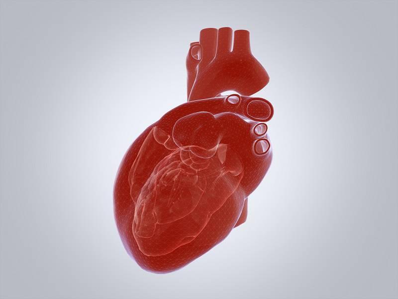 defectos-cardiacos-congenitos-tratamiento-con-cateterismo imágen de artículo