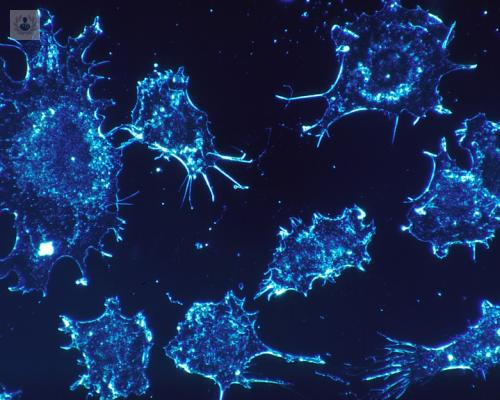 celulas-tumorales-cancer