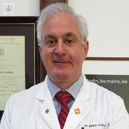 Dr. Pedro Vidal García-Huidobro