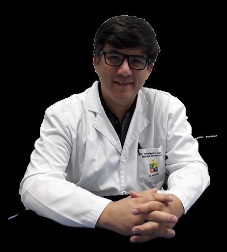 Hermógenes Ernesto Tobar Acevedo imagen perfil