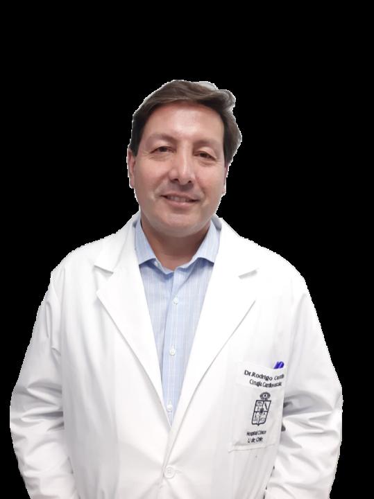 Rodrigo Mauricio Castillo Koch imagen perfil